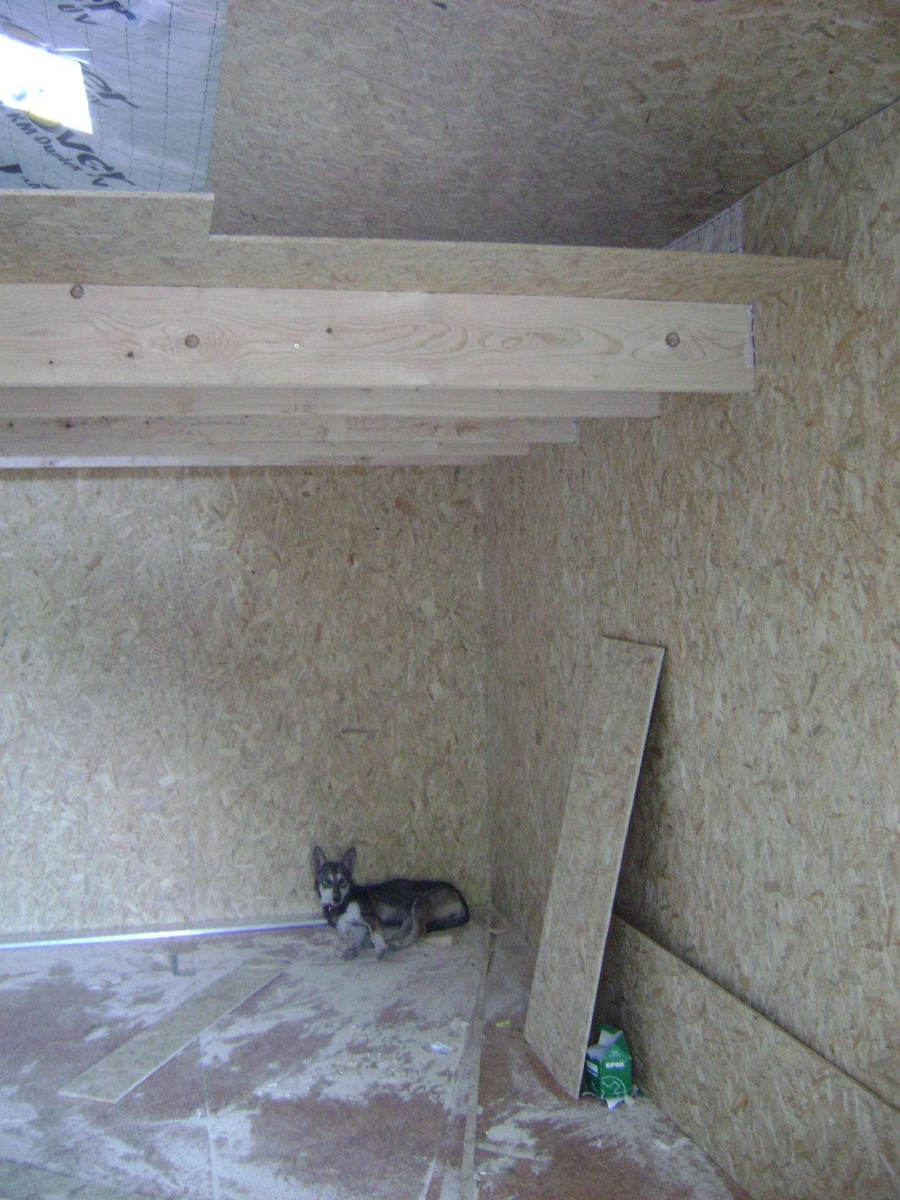 Pose du bardolino pour le toit du garage et doublage for Interieur osb