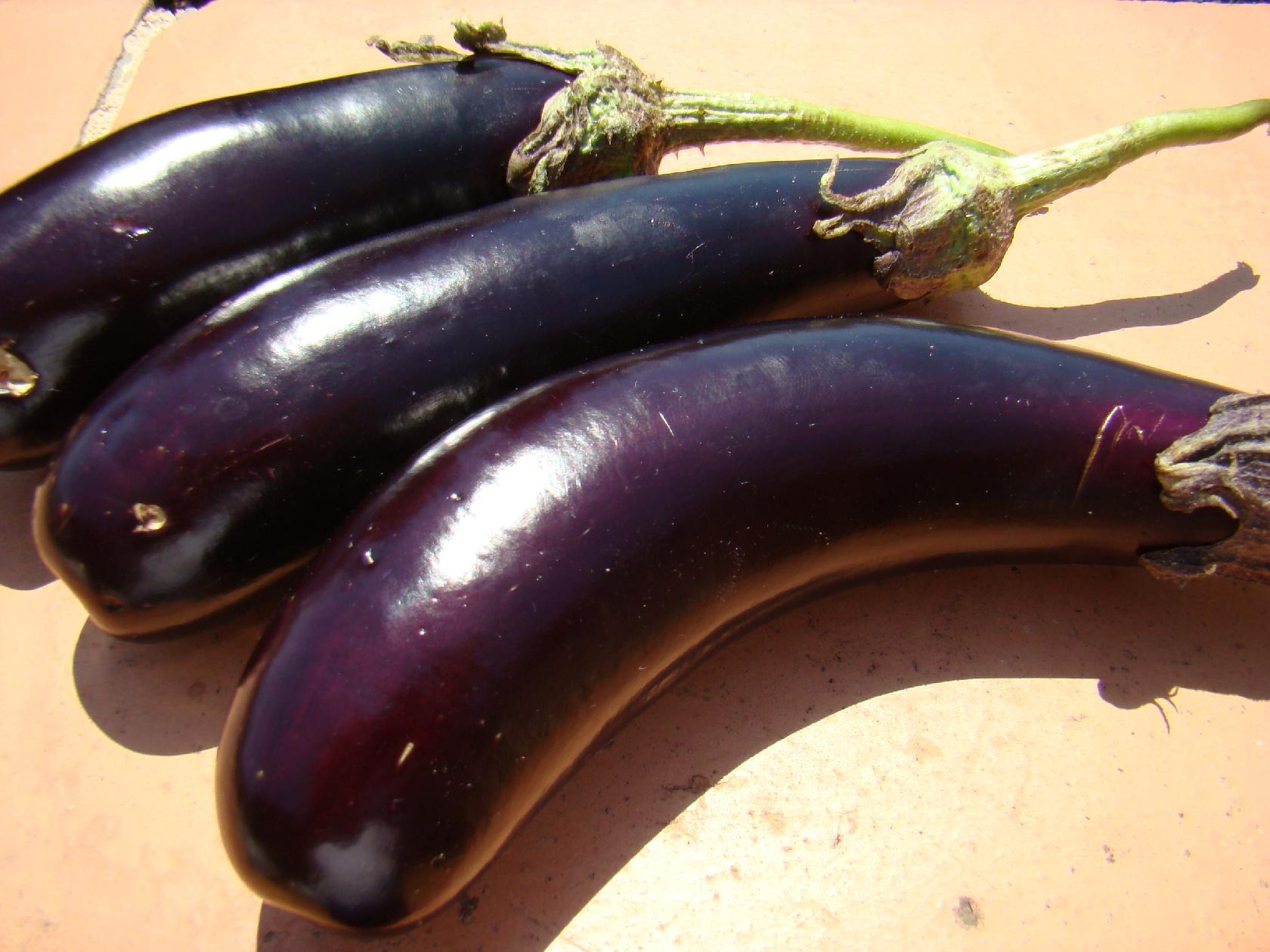 Aubergines au sel et vinaigre huile d 39 olive conserve for Aubergines en conserve maison